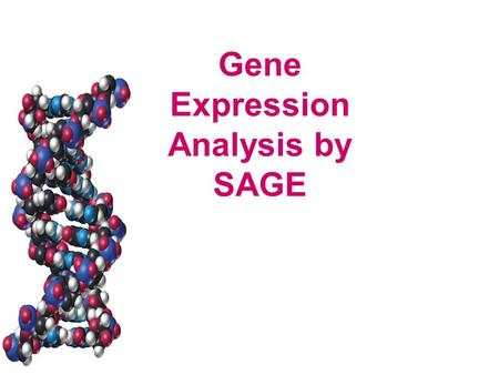Gene Expression Analysis by SAGE. Gene Expression Some challenges: –Large number of genes How do you keep samples and equipment small and affordable?
