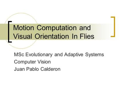 Motion Computation and Visual Orientation In Flies MSc Evolutionary and Adaptive Systems Computer Vision Juan Pablo Calderon.