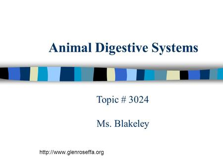 Animal Digestive Systems  Topic # 3024 Ms. Blakeley.