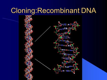 Cloning:Recombinant DNA Multistep Process . Produce fragments of DNA using enzymes that cut DNA at specific base sequences. . Link these fragments.