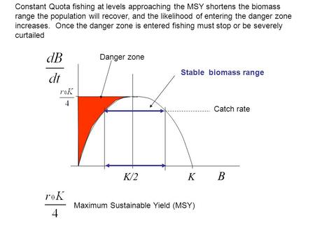 B KK/2 Catch rate Constant Quota fishing at levels approaching the MSY shortens the biomass range the population will recover, and the likelihood of entering.
