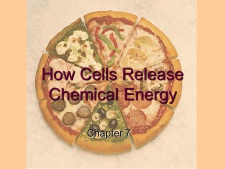 How Cells Release Chemical Energy Chapter 7. Learning Objectives: 1.What is the relationship between cellular respiration and breathing? 2.List the balanced.