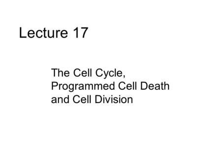 Lecture 17 The Cell Cycle, Programmed Cell Death and Cell Division.