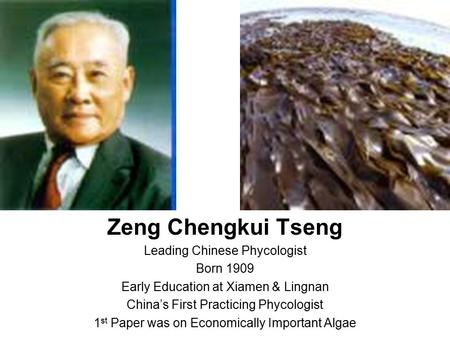 Zeng Chengkui Tseng Leading Chinese Phycologist Born 1909 Early Education at Xiamen & Lingnan China's First Practicing Phycologist 1 st Paper was on Economically.