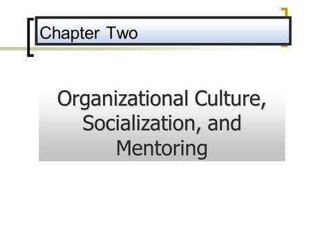 Organizational Culture, Socialization, and Mentoring
