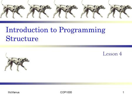Introduction to Programming Structure Lesson 4 McManusCOP10001.