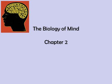 The Biology of Mind Chapter 2