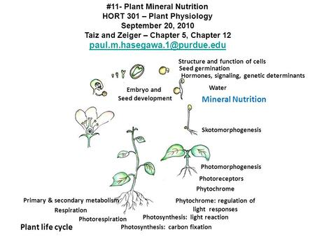 Mineral Nutrition Plant life cycle
