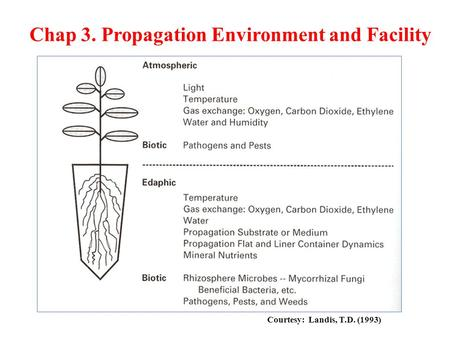 Courtesy: Landis, T.D. (1993) Chap 3. Propagation Environment and Facility.