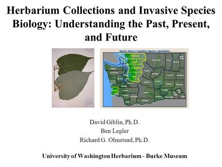 Herbarium Collections and Invasive Species Biology: Understanding the Past, Present, and Future David Giblin, Ph.D. Ben Legler Richard G. Olmstead, Ph.D.