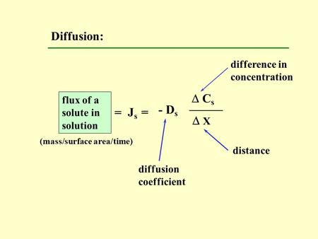 Diffusion:  C s  X - D s J s = difference in concentration distance diffusion coefficient flux of a solute in solution = (mass/surface area/time)