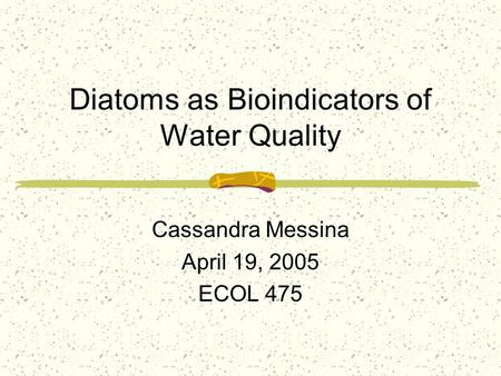 Diatoms as Bioindicators of Water Quality Cassandra Messina April 19, 2005 ECOL 475.