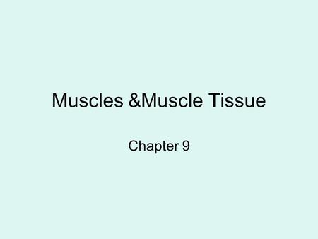 Muscles &Muscle Tissue Chapter 9. Function of Muscles Movement Posture Stabilization of Joints Thermogenesis (heat production)