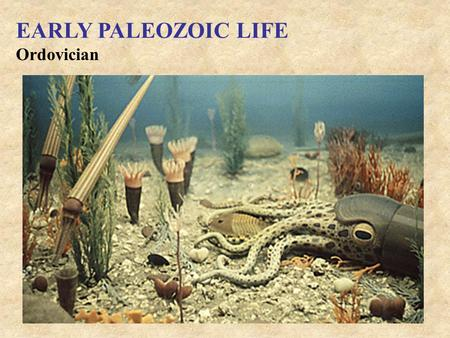 Ordovician EARLY PALEOZOIC LIFE. Silurian EARLY PALEOZOIC LIFE.