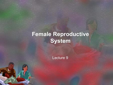 Female Reproductive System Lecture 9. Reproduction is accomplished when the egg cell (female gamete) is fertilized by the sperm cell (male gamete)