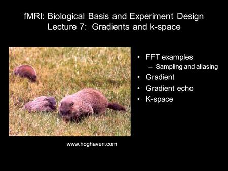 FMRI: Biological Basis and Experiment Design Lecture 7: Gradients and k-space FFT examples –Sampling and aliasing Gradient Gradient echo K-space www.hoghaven.com.