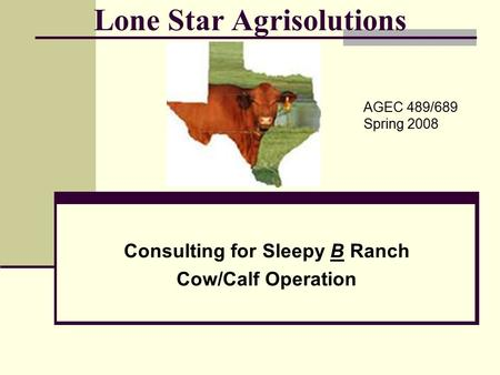 Lone Star Agrisolutions Consulting for Sleepy B Ranch Cow/Calf Operation AGEC 489/689 Spring 2008.
