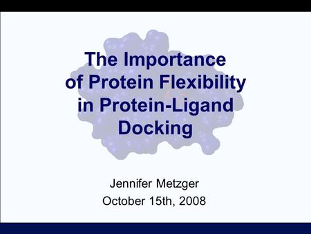 The Importance of Protein Flexibility in Protein-Ligand Docking Jennifer Metzger October 15th, 2008.