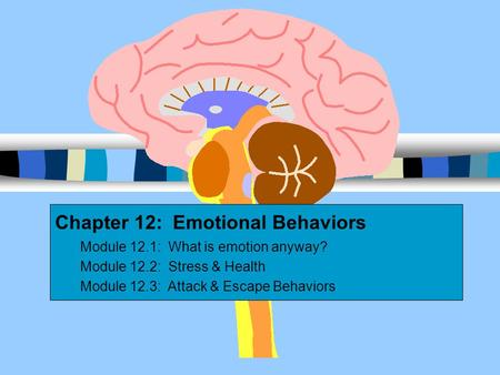 Chapter 12: Emotional Behaviors Module 12.1: What is emotion anyway? Module 12.2: Stress & Health Module 12.3: Attack & Escape Behaviors.