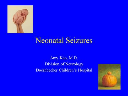 Neonatal Seizures Amy Kao, M.D. Division of Neurology Doernbecher Children's Hospital.