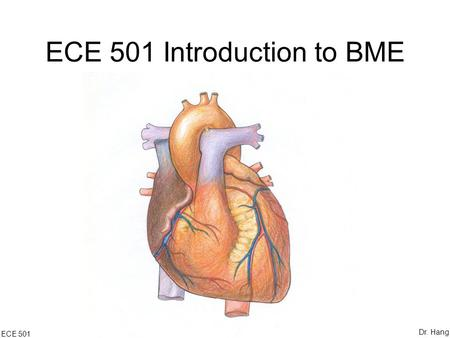 ECE 501 Introduction to BME