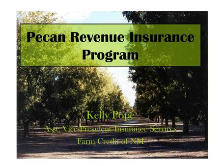 Pecan Revenue Insurance Program Kelly Pope Asst. Vice-President Insurance Services Farm Credit of NM.