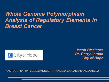 Whole Genome Polymorphism Analysis of Regulatory Elements in Breast Cancer AAGTCGGTGATGATTGGGACTGCTCT[C/T]AACACAAGCGAGATGAAGAAACTGA Jacob Biesinger Dr.