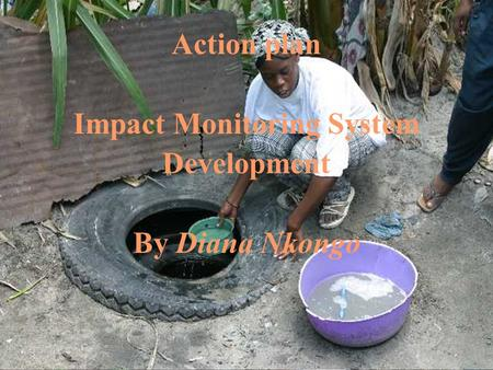 Diana Nkongo Action plan Impact Monitoring System Development By Diana Nkongo.