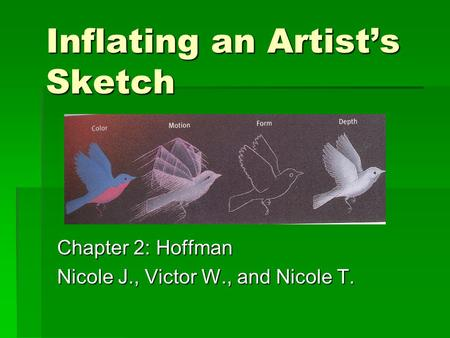 Inflating an Artist's Sketch Chapter 2: Hoffman Nicole J., Victor W., and Nicole T.