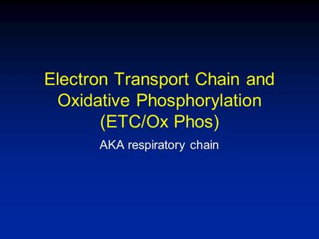 Electron Transport Chain and Oxidative Phosphorylation (ETC/Ox Phos) AKA respiratory chain.