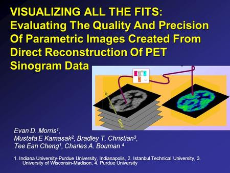 VISUALIZING ALL THE FITS: Evaluating The Quality And Precision Of Parametric Images Created From Direct Reconstruction Of PET Sinogram Data Evan D. Morris.