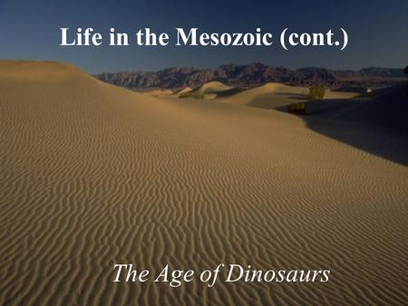 Life in the Mesozoic (cont.) The Age of Dinosaurs.