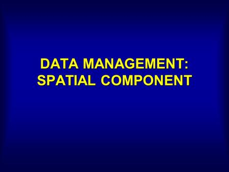 DATA MANAGEMENT: SPATIAL COMPONENT. RASTER AND VECTOR FORMATS RASTER : Grid-based, Simplify reality VECTOR : Analog map, Cartography.