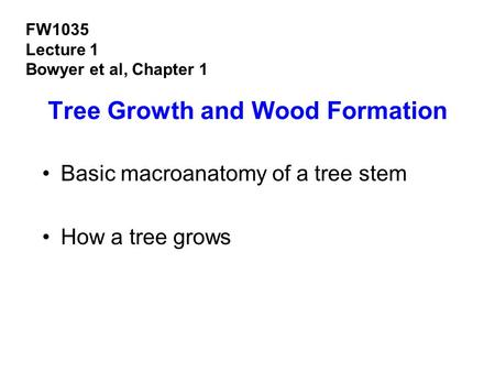 Tree Growth and Wood Formation