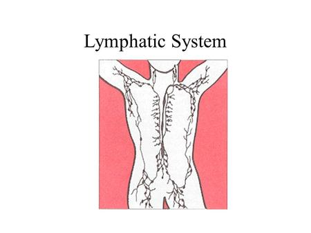 Lymphatic System. Functions of the Lymphatic System Fluid Balance - returns interstitial fluid to the blood Fat [and fat soluble vitamins] Absorption.