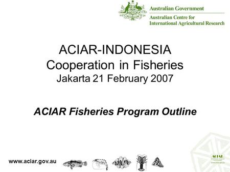 ACIAR-INDONESIA Cooperation in Fisheries Jakarta 21 February 2007 ACIAR Fisheries Program Outline www.aciar.gov.au.