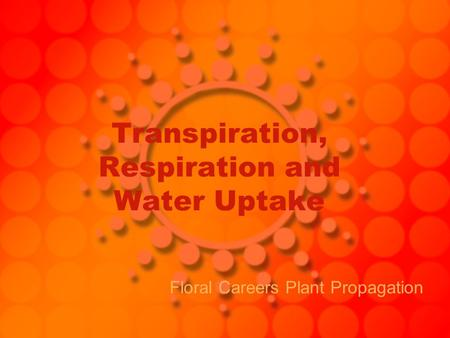 Transpiration, Respiration and Water Uptake Floral Careers Plant Propagation.