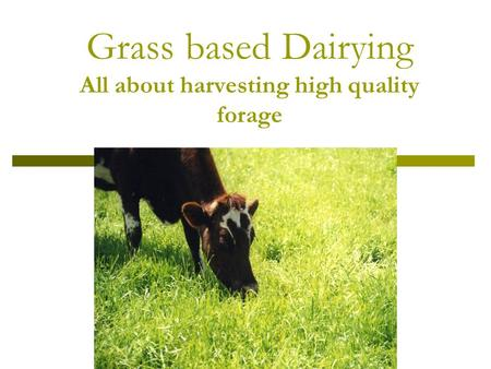 Grass based Dairying All about harvesting high quality forage.