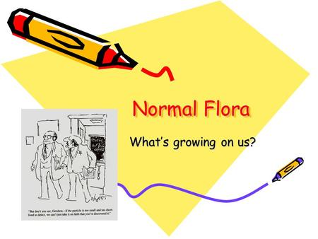 Normal Flora What's growing on us?.