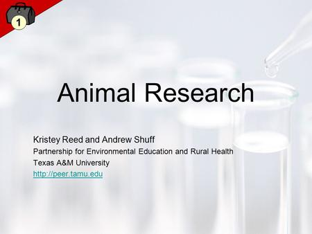 1 Animal Research Kristey Reed and Andrew Shuff Partnership for Environmental Education and Rural Health Texas A&M University