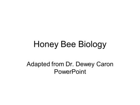 Honey Bee Biology Adapted from Dr. Dewey Caron PowerPoint.