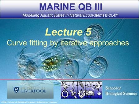 Lecture 5 Curve fitting by iterative approaches MARINE QB III MARINE QB III Modelling Aquatic Rates In Natural Ecosystems BIOL471 © 2001 School of Biological.