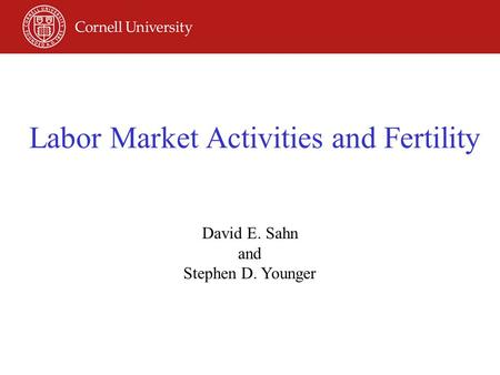Labor Market Activities and Fertility David E. Sahn and Stephen D. Younger.