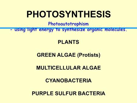 PHOTOSYNTHESIS Photoautotrophism - using light energy to synthesize organic molecules. PLANTS GREEN ALGAE (Protists) MULTICELLULAR ALGAE CYANOBACTERIA.