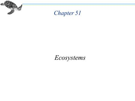 Chapter 51 Ecosystems. Chapter 51 Ecosystems n Many global environmental problems have emerged recently. n Ecosystems consist of all the organisms that.