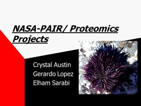 NASA-PAIR/ Proteomics Projects Crystal Austin Gerardo Lopez Elham Sarabi.
