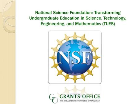 National Science Foundation: Transforming Undergraduate Education in Science, Technology, Engineering, and Mathematics (TUES)