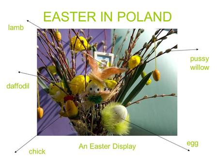 EASTER IN POLAND An Easter Display lamb daffodil chick egg pussy willow.