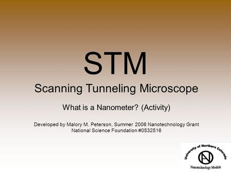 STM Scanning Tunneling Microscope What is a Nanometer? (Activity) Developed by Malory M. Peterson, Summer 2006 Nanotechnology Grant National Science Foundation.