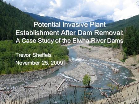 Potential Invasive Plant Establishment After Dam Removal: A Case Study of the Elwha River Dams Trevor Sheffels November 25, 2009.